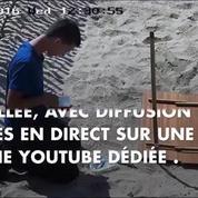Un nid artificiel pour les œufs d'une tortue marine, après une ponte rarissime à Fréjus