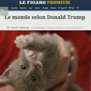 Une extension de Chrome remplace Trump par... des chatons !