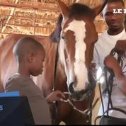 A Haïti, la «horse therapy» aide à la rééducation