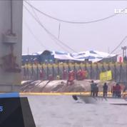 Trois ans après le naufrage qui a fait 304 victimes, le ferry sud-coréen Sewol refait surface
