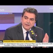 Pierre Lellouche :