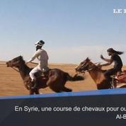 En Syrie, une course de chevaux pour oublier la guerre