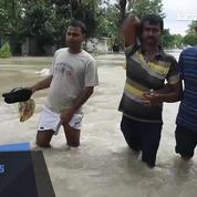 Mousson au Népal : 115 morts, des touristes évacués à dos d'éléphant