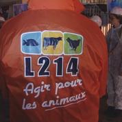 Des militants L214 dans la rue pour Halloween