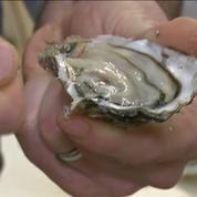 Réveillon : les conseils d'un chef cuisinier pour ouvrir des huîtres sans se blesser