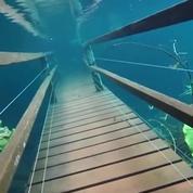 Brésil : les images spectaculaires d'un chemin de randonnée sous les eaux