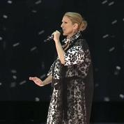 Céline Dion : la diva en 5 chiffres