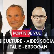 Points de vue du 29 mai : agriculture, politique sociale, Italie, Erdogan