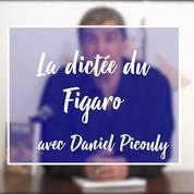 Dictée du Figaro : Daniel Picouly défie la bête noire de l'orthographe