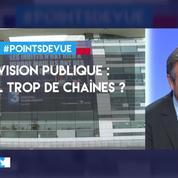 Télévision publique : y a-t-il trop de chaînes ?