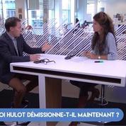 «Pendant ses 14 mois au gouvernement, Nicolas Hulot n'a cessé d'avaler des couleuvres»