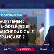 Aufstehen : un modèle pour la gauche radicale française ?