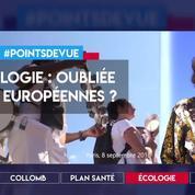 Ecologie : oubliée des Européennes ?