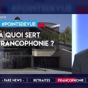 Sommet d'Erevan : à quoi sert la francophonie ?