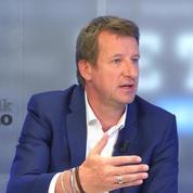 Yannick Jadot: «Je vise 15% aux européennes»