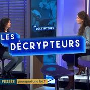 Agnès Leclair : « Cette loi veut montrer que la fessée peut-être le premier pas de la maltraitance »