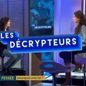 Agnès Leclair : « Cette loi veut montrer que la fessée peut être le premier pas vers la maltraitance. »