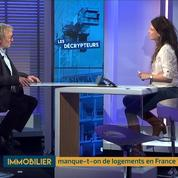 Quel est l'état du parc immobilier français ? L'analyse de Jean-Claude Driant