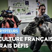 Agriculture française : les vrais défis