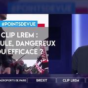 Clip LREM pour les européennes : ridicule, dangereux, ou efficace ?