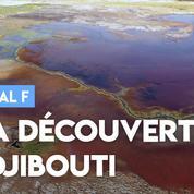 « Terminal F » à la découverte de Djibouti