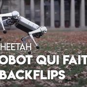 Mini Cheetah : ce robot du MIT sait faire des backflips
