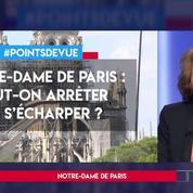 Notre-Dame de Paris : peut-on arrêter de s'écharper ?