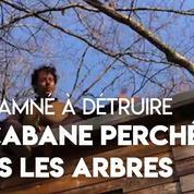 Doubs : il lance un appel pour sauver sa cabane perchée dans les arbres