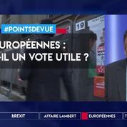 Européennes : y a-t-il un vote utile ?