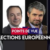 Points de vue du 27 mai : élections européennes (recomposition, LR, populistes, EELV)