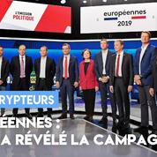 Européennes : ce qu'a révélé la campagne