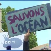 Océans : une marche à Paris pour dénoncer la surpêche et la pollution