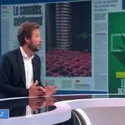 Légalisation du cannabis : Boris Vallaud invite le gouvernement à «accepter le débat»