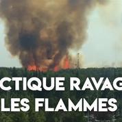 Des feux de forêts ont ravagé l'Arctique