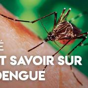 Santé : tout savoir sur la dengue