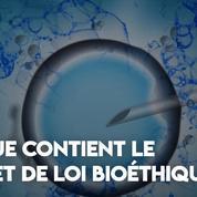 Ce que contient le projet de loi sur la bioéthique