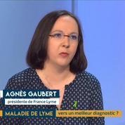 Maladie de Lyme : des malades en colère par Agnès Gaubert