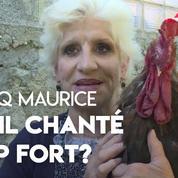 La justice doit décider si le coq Maurice a chanté trop fort