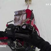 La Grande Odyssée des chiens de neige