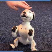 CES 2019 : on a joué avec Aibo, le chien robot de Sony