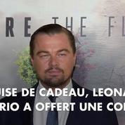 Leonardo DiCaprio essaie de convaincre le climatosceptique Donald Trump
