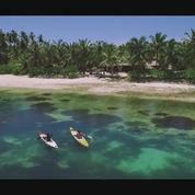 Découvrez Alphonse Island, perle des Seychelles