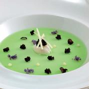 Caviar Sturia Primeur en gelée de pomme verte