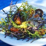 Salade de coquillages