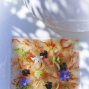 Pavé de queues de crevettes rouges de San Remo