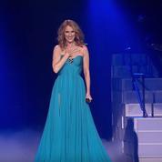 Céline Dion : la rétrospective en vidéo de son année sans René Angelil