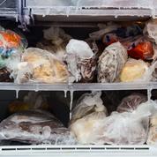 Pratique : comment bien congeler et décongeler ses aliments