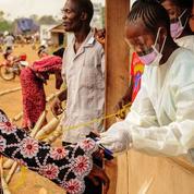 Ebola: la fin de l'épidémie encore annoncée trop vite