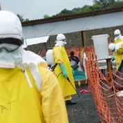 Une première Française contaminée par le virus Ebola