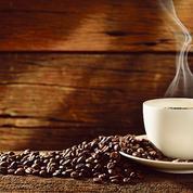 Caféine: ce que l'on sait, ce que l'on cherche